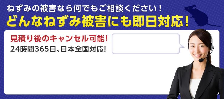 ねずみの被害なら何でもご相談ください! どんなねずみ被害にも即日対応! 見積り後のキャンセル可能! 24時間365⽇、日本全国対応!