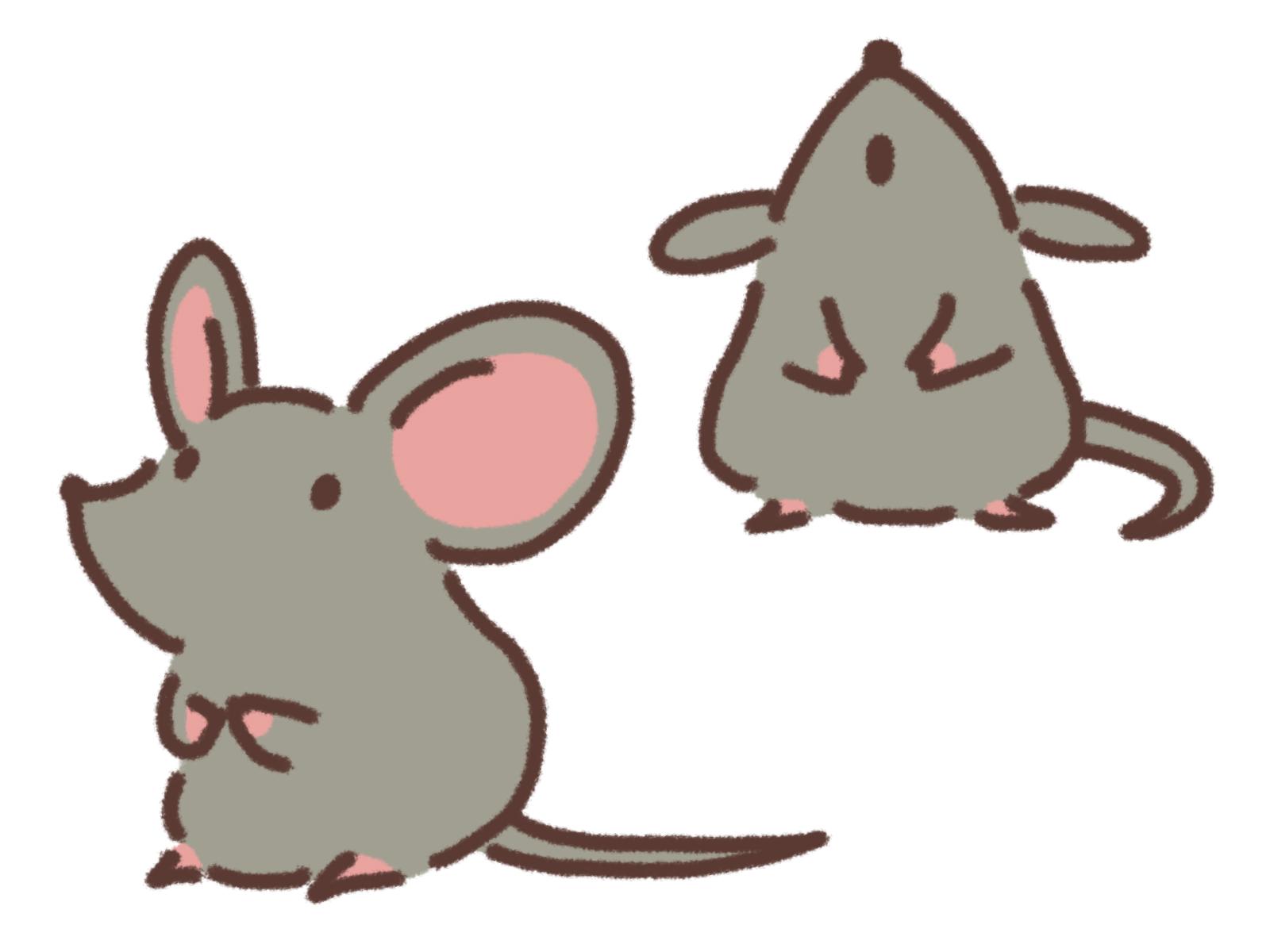 ネズミの好物のエサで駆除をする?ネズミ駆除に最適な方法とは