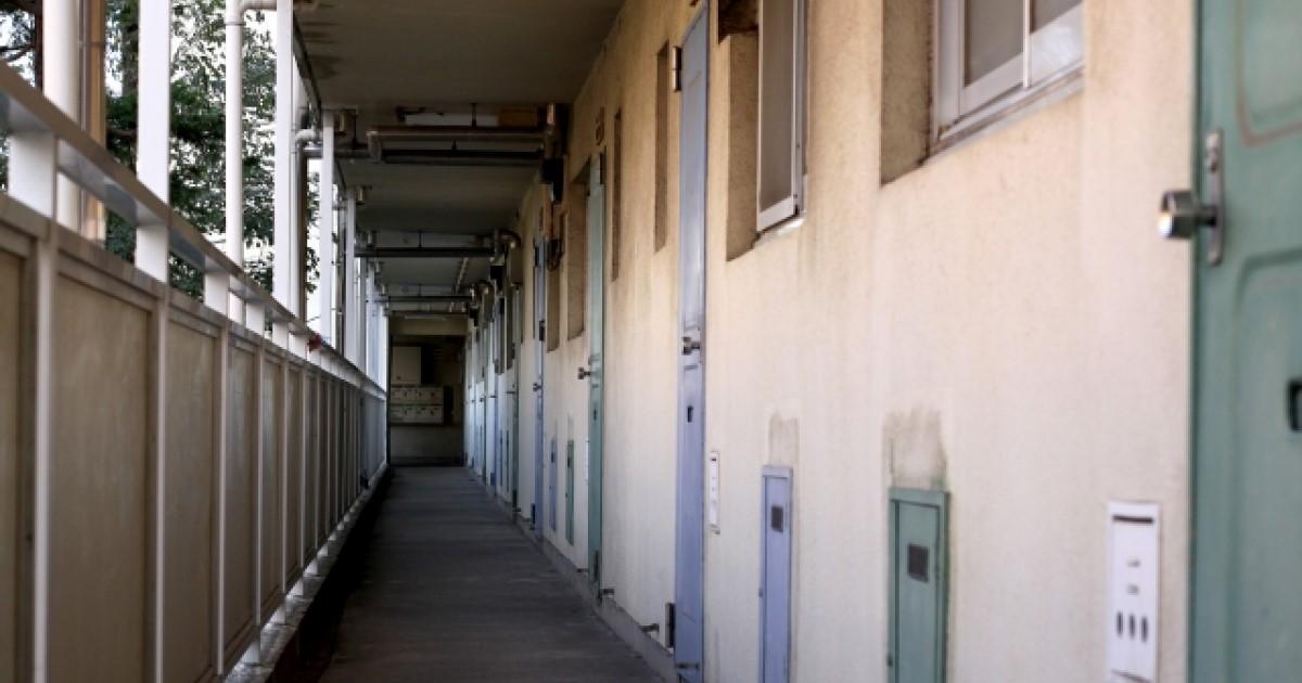 アパートでねずみが発生!対処方法や駆除費用の負担先について解説