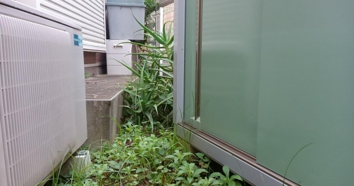 ねずみが巣を作りやすい場所とは?撤去方法や注意点などを解説します