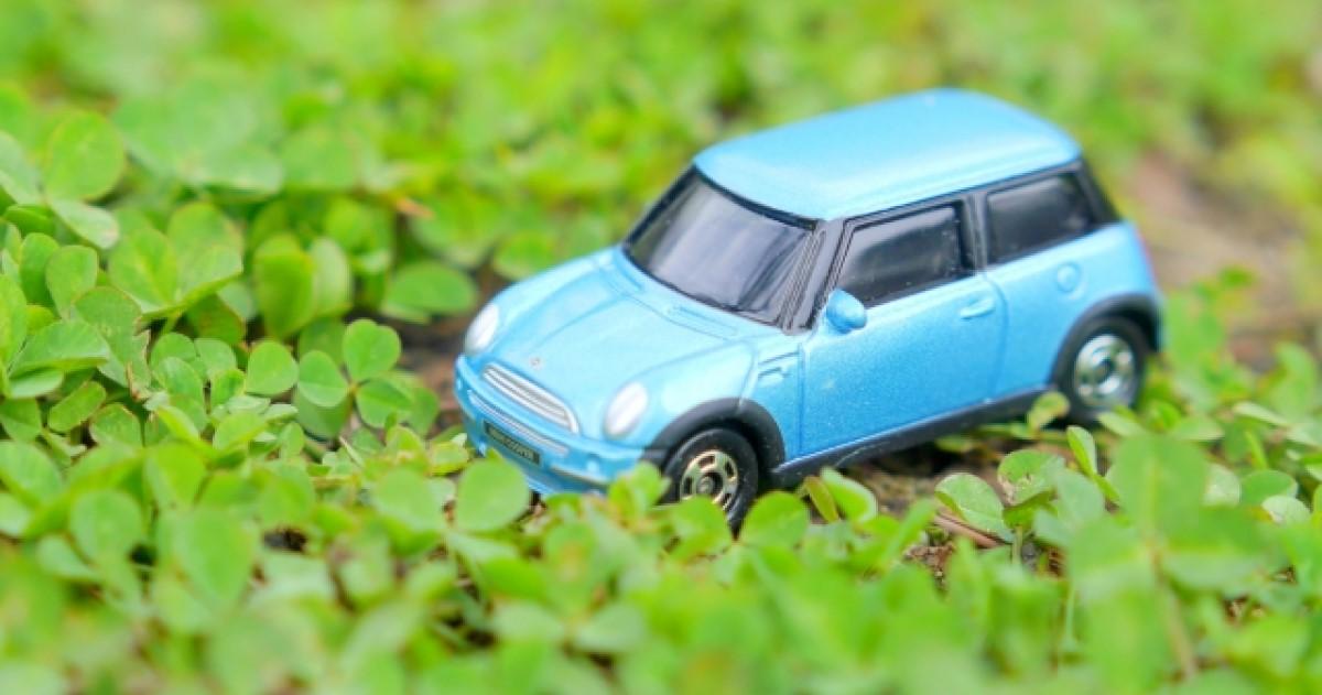 ねずみが車に侵入していないかチェック!駆除と侵入防止対策法を解説